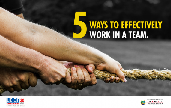 Work in a team